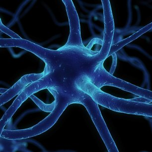 neuron-synapses-network